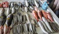 fish-market-14